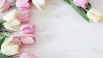 flowers-783__1496065092__300h